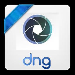 dng icon