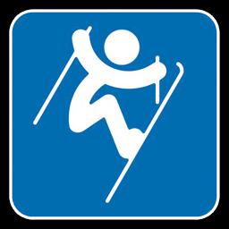 Freestyle Skiing Aerials icon