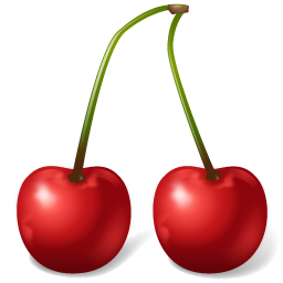 Fruit Cherry icon
