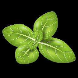 Herb Basil icon