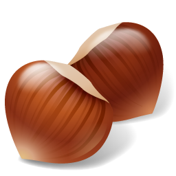 Nut Hazelnut icon