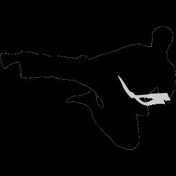 karate flyingkick icon